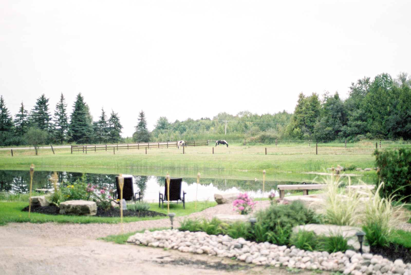diy-toronto-farm-wedding-44