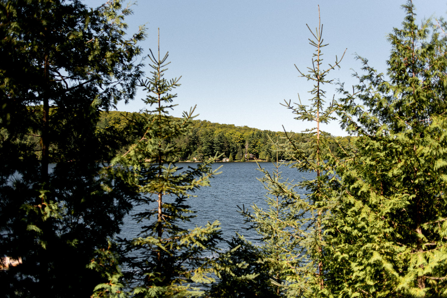 lanscape photo of paudash lake in ontario
