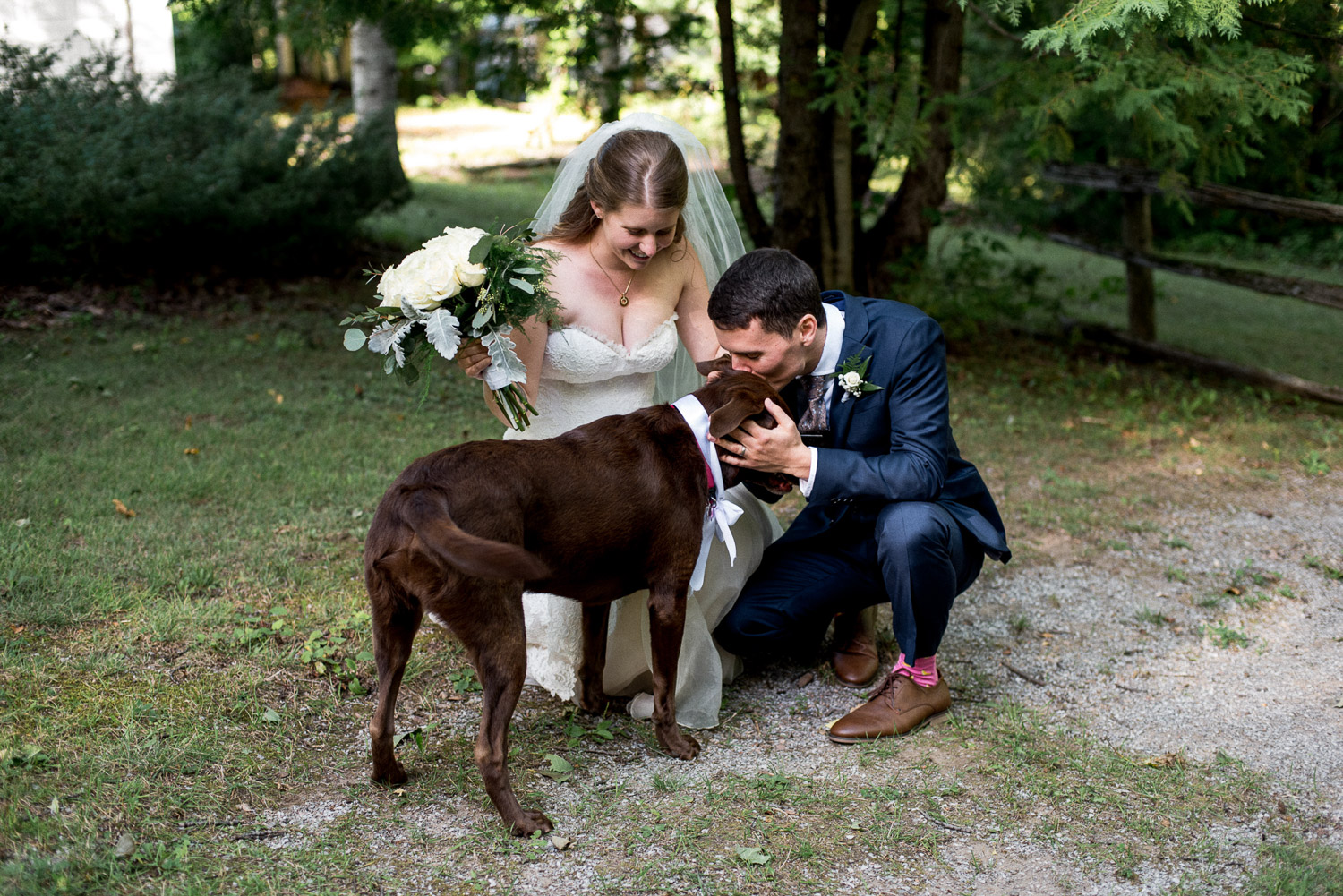 best wedding photo with dog