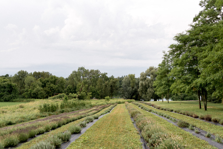 christel lake lavender